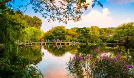 杭州西子湖畔秋意渐浓