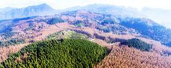 """""""石头山""""里生""""林海""""重庆南川山王坪实施石漠化治理,植树造林造出万亩""""林海"""",森林覆盖率达95.5%。[阅读]"""